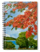 Turtle Bay Virgen Islands Spiral Notebook