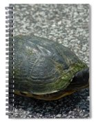 Turtle Crossing Spiral Notebook