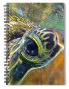 Turtle Eye Spiral Notebook