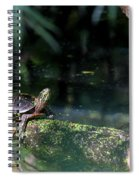 Turtle Grotto Spiral Notebook