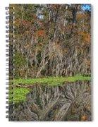 Turtle Haven Spiral Notebook