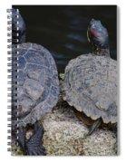 Turtle Love Spiral Notebook