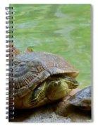 Turtle Ninjas Spiral Notebook