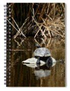 Turtle On Turtle Spiral Notebook
