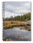 Turtle Rock Cloudy Day Spiral Notebook