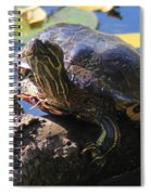 Turtle Smile Spiral Notebook