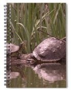 Turtle Struggling To Rest On A Log With Its Buddy Spiral Notebook