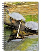 Turtles At The National Zoo Spiral Notebook