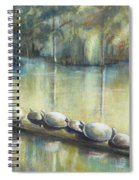 Turtles On A Log Spiral Notebook