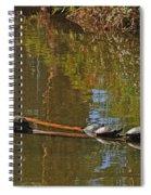 Turtles On A Log Spiral Notebook
