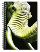 Tusk 1 - Dramatic Elephant Head Shot Art Spiral Notebook