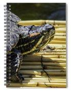 Tutle On Raft Spiral Notebook