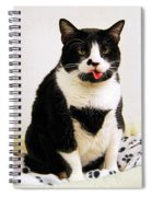 Tuxedo Cat Sticking Out Her Tongue Spiral Notebook