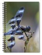 Twelve Spot Hanging Out Spiral Notebook