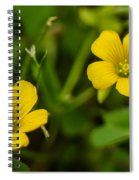Twice As Nice Spiral Notebook