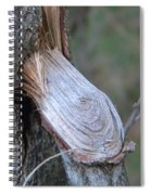 Twigs Spiral Notebook