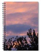 Twilight Beauty Spiral Notebook