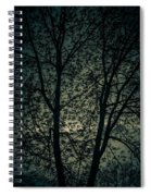 Twilight Colors  Spiral Notebook