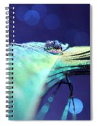 Twilight Dreams Spiral Notebook