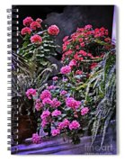 Twilight In The Courtyard Spiral Notebook