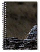 Twilight Owl Spiral Notebook