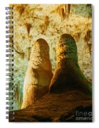 Twin Domes Spiral Notebook