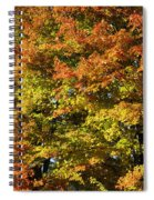 Twin Maples Spiral Notebook