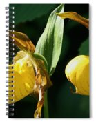 Twin Slippers Spiral Notebook