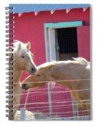 Twin Souls Spiral Notebook