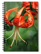 Twin Turks Spiral Notebook