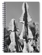 Twin Towers Bw Spiral Notebook