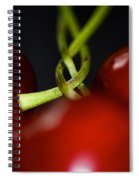Twisted Cherries Spiral Notebook