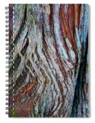 Twisted Colourful Wood Spiral Notebook