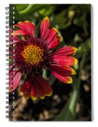 Twisted Petals Spiral Notebook