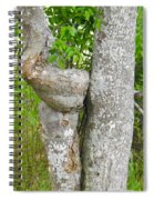 Twisted Trunk Spiral Notebook