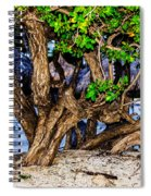 Twisted Trunks Spiral Notebook