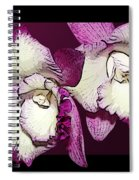 Two Baby Orchids Spiral Notebook