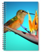 Two Birds Of Paradise Spiral Notebook