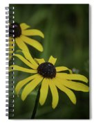Two Black Eyes On The Macomb Orchard Trails Spiral Notebook