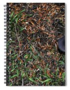 Two Black Stools Spiral Notebook