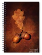 Two Brown Acorns Spiral Notebook