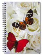 Two Butterflies On White Roses Spiral Notebook