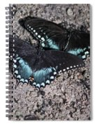 Two By Two Spiral Notebook