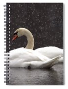 Two Christmas Swans A Swimming Spiral Notebook