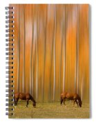 Two Colorado High Country Mystic Autumn Horses Spiral Notebook