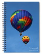Two Colorful Balloons Spiral Notebook