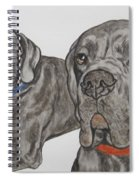 Two Cool Danes Spiral Notebook