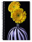 Two Daises In Striped Vase Spiral Notebook