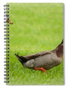 Two Drakes Spiral Notebook