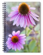 Two Echinacea Spiral Notebook
